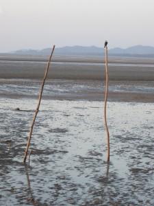 Saladan beach at low tide-Koh Lanta